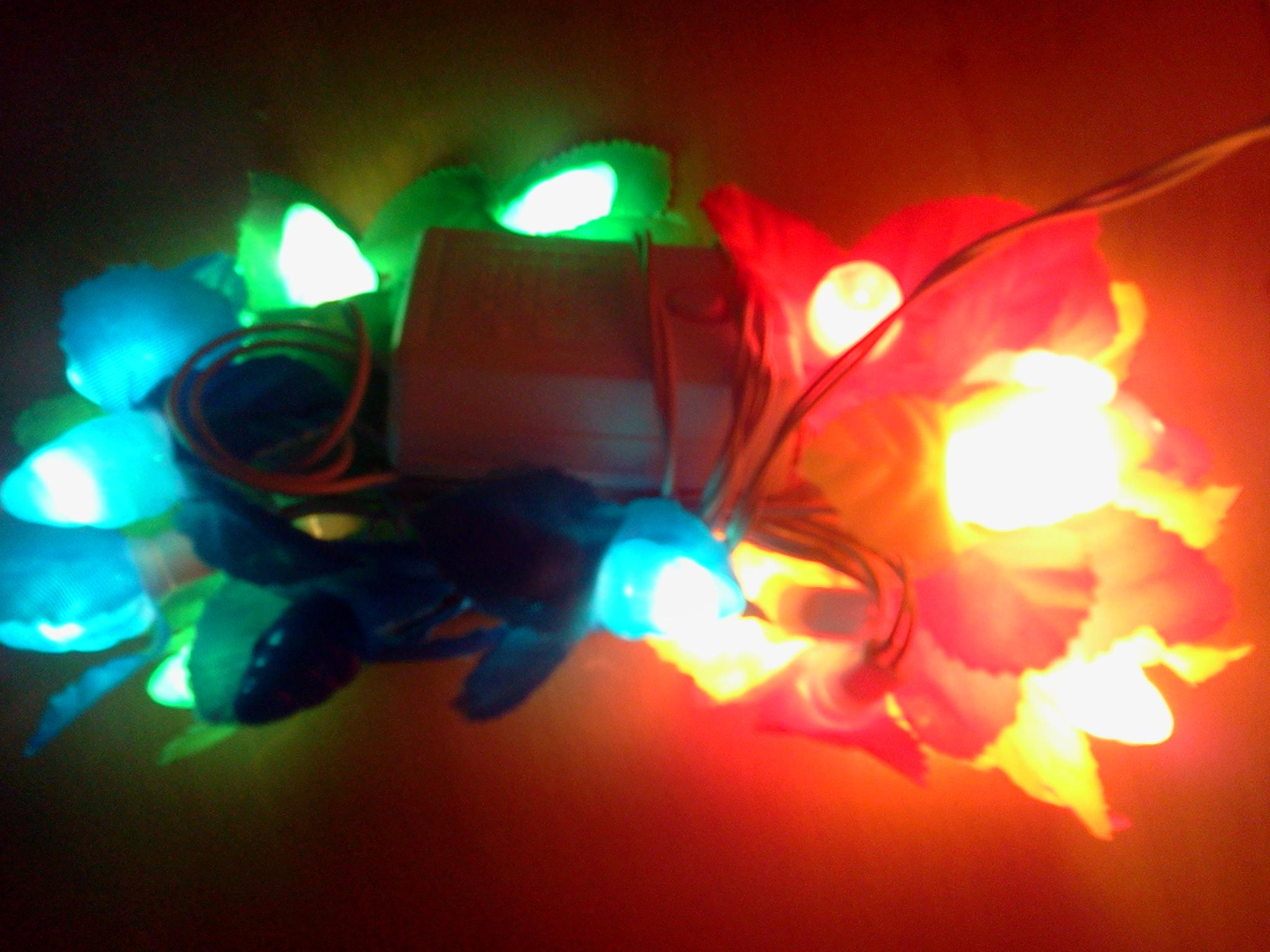 Decoration light in MultiColour Bulbs